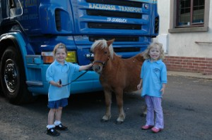 stableyard3